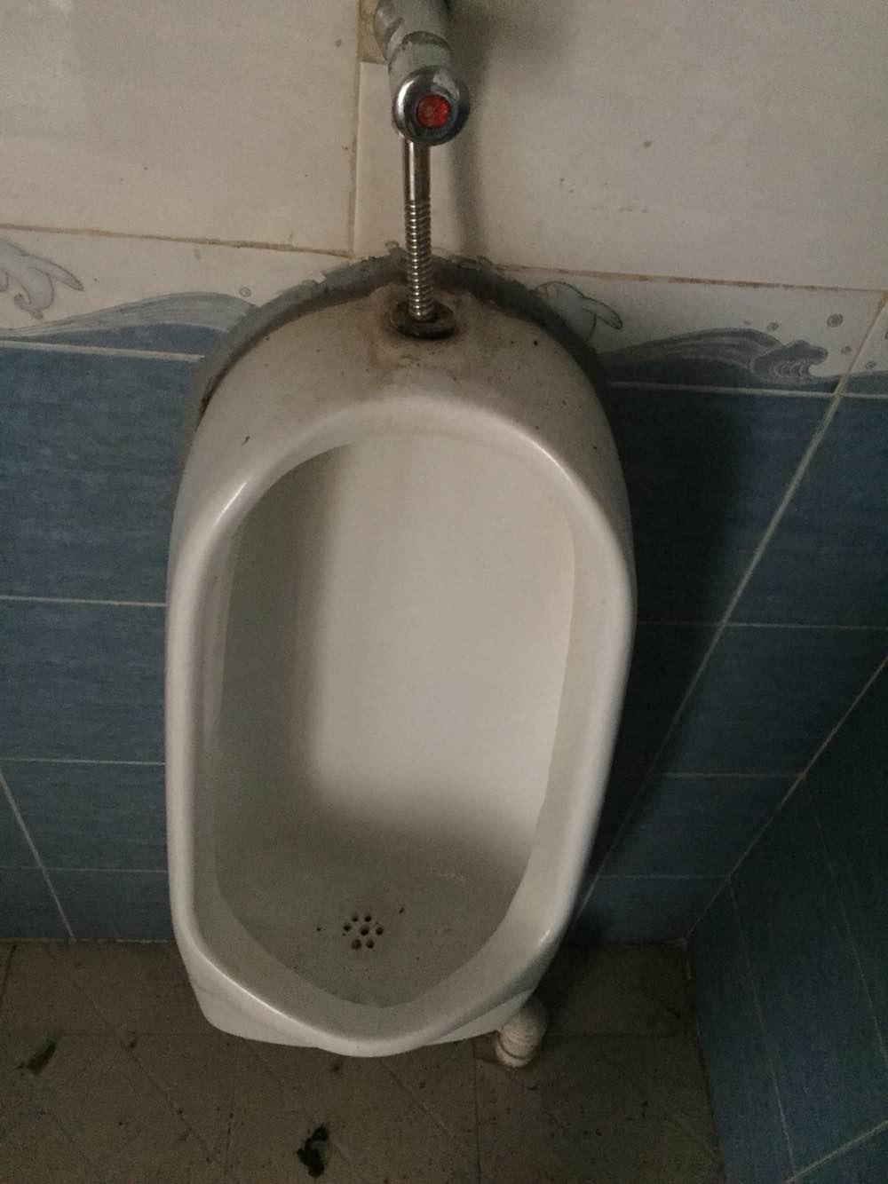 疏通厕所下水道,改管换厕所便盆,外墙维修水管,清洗外墙.拆排烟管!