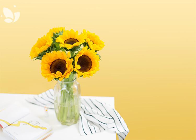 小太阳「向日葵」 单束鲜花