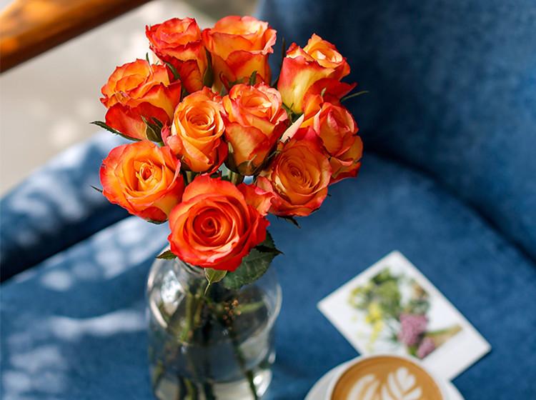 自然系列单品版|每周一束-新用户首单送花