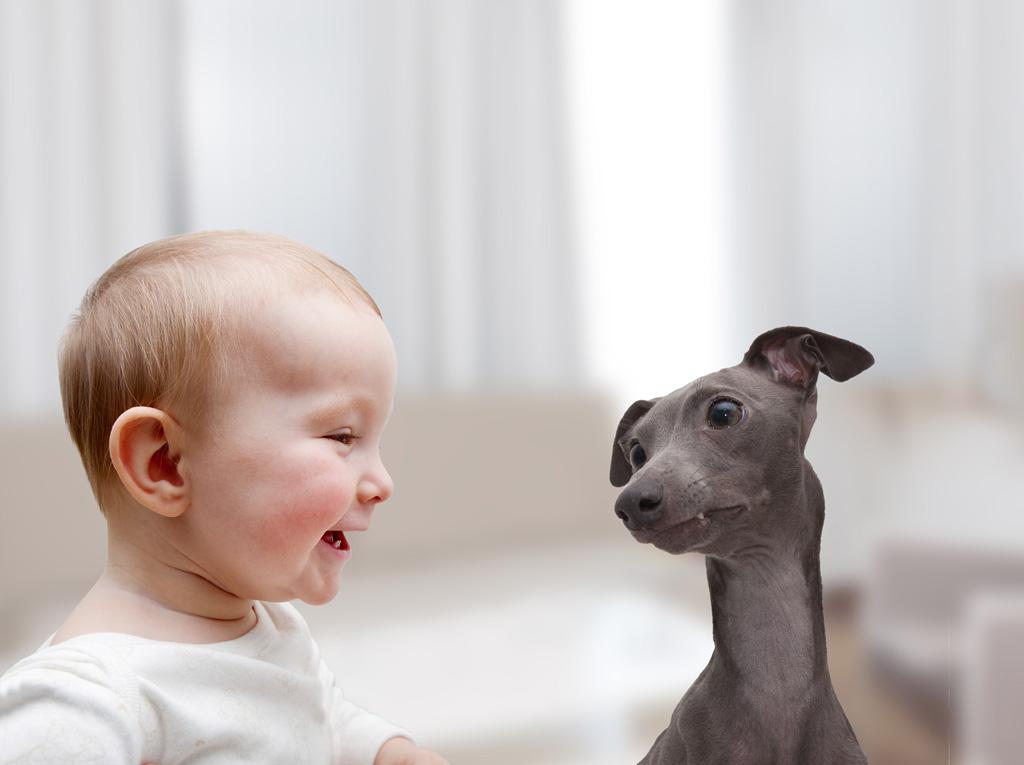 婴幼儿肩脱位的病因及治疗